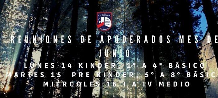 REUNIONES DE APODERADOS MES DE JUNIO